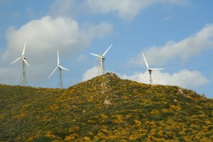Environmental Fiscal Reform in Spain