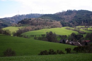 green_landscape_flickr_tillwe